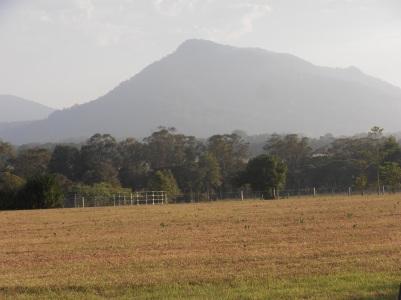 Moreland NSW