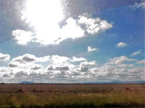 On the road near Moree