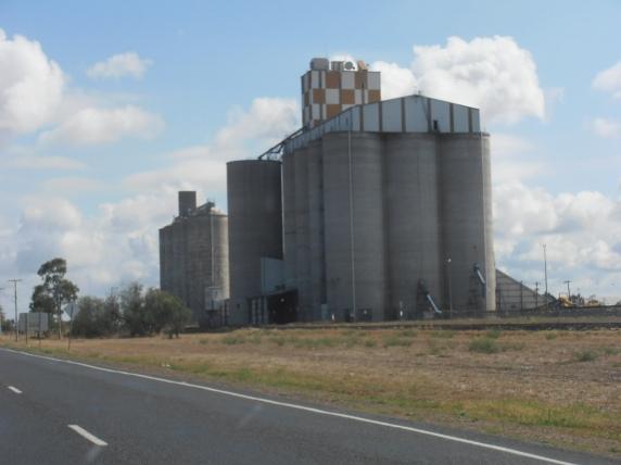 Grain Cilo on the road near Moree